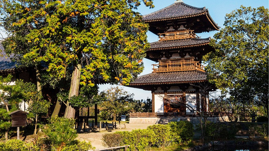 This Japanese temple is living proof that wood is an excellent building material in quake prone areas.